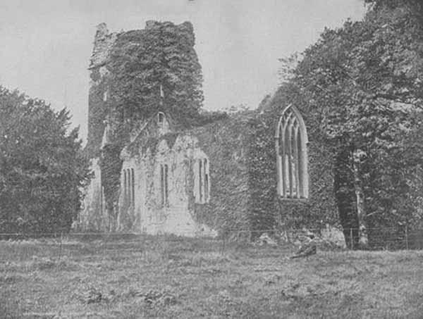 Muckross Abbey, Kerry