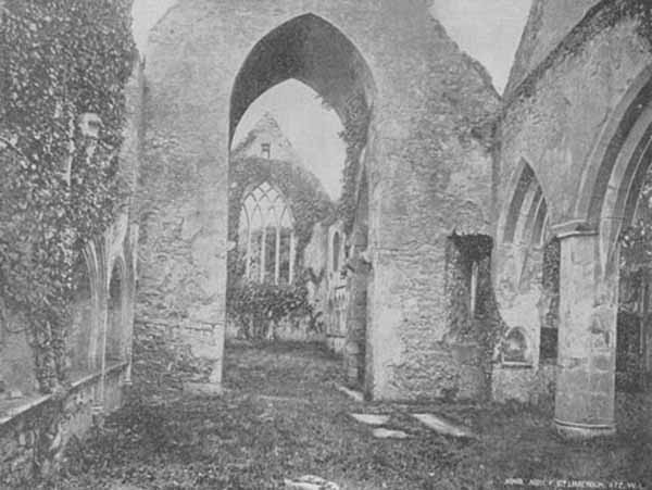 Adare Abbey, Limerick