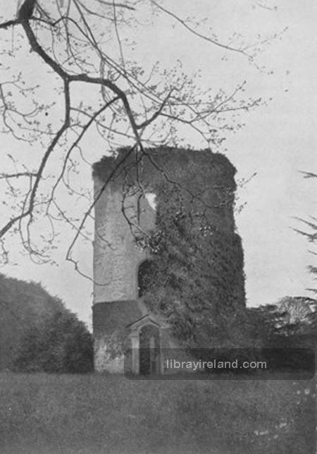 The Tower of Shane's Castle, Antrim