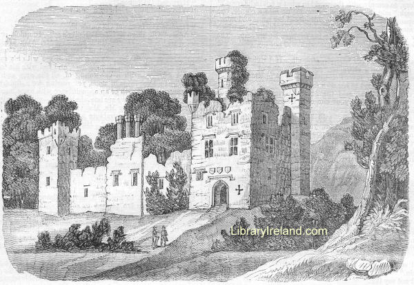 Garryowl Castle, County Cork